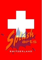 Schweizer Kreuz Magnet